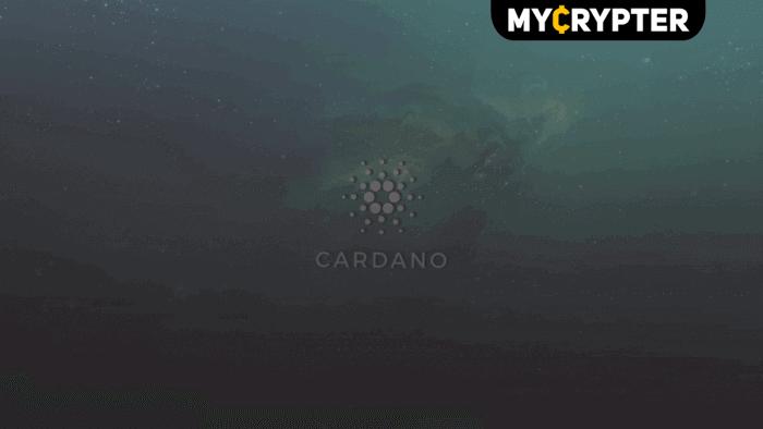 Популярный проект Cardano: что он из себя представляет?