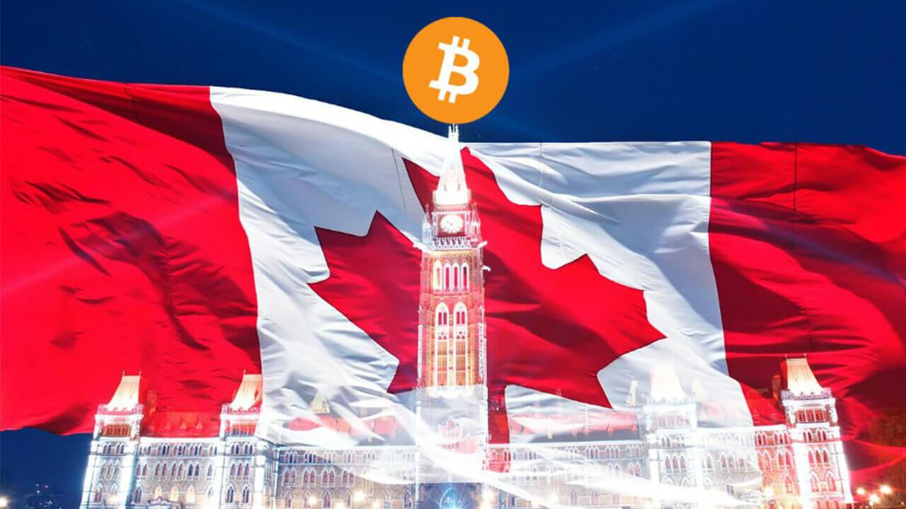 CoinField добавит 10 новых валют в 2018-м