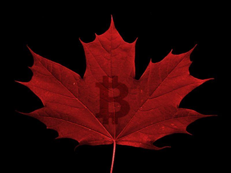 Ритейлеры расширяют область применения цифровых денег