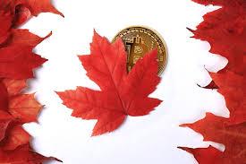 Канада задумалась о регулировании