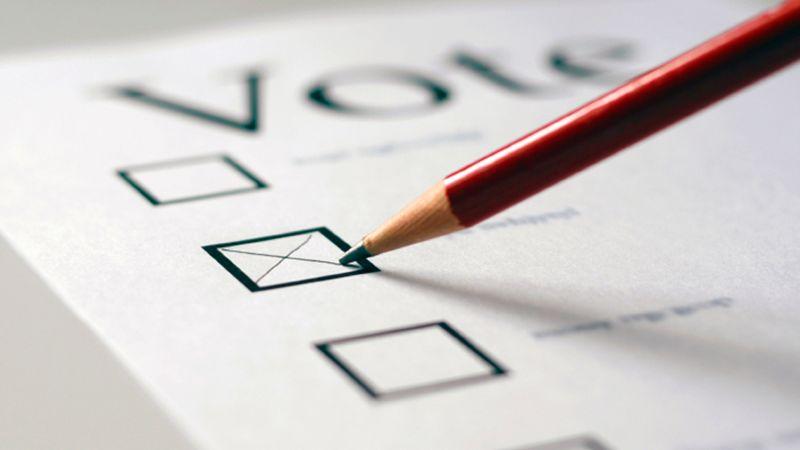Янг предлагает блокчейн-выборы