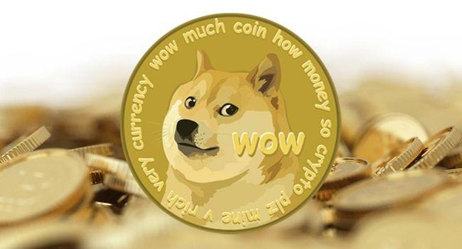 Обзор монет: DOGE