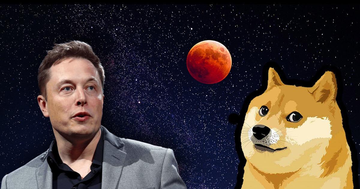 Маск просит крупных держателей Dogeсoin продать часть актива