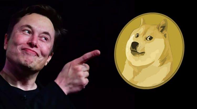 Маск купил сиба-ину — символ Dogecoin