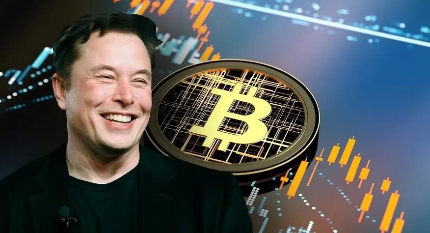 Илон Маск против государственного регулирования криптовалютного рынка
